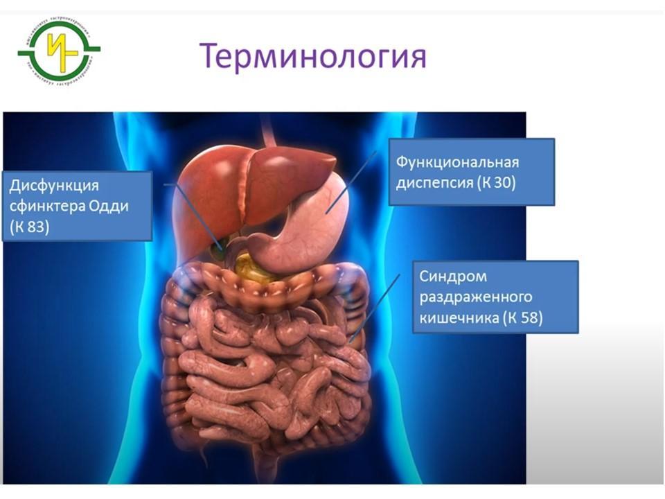 """Лекция врача-гастроэнтеролога Ю.П. Шумкова """"Синдром раздраженного кишечника"""""""